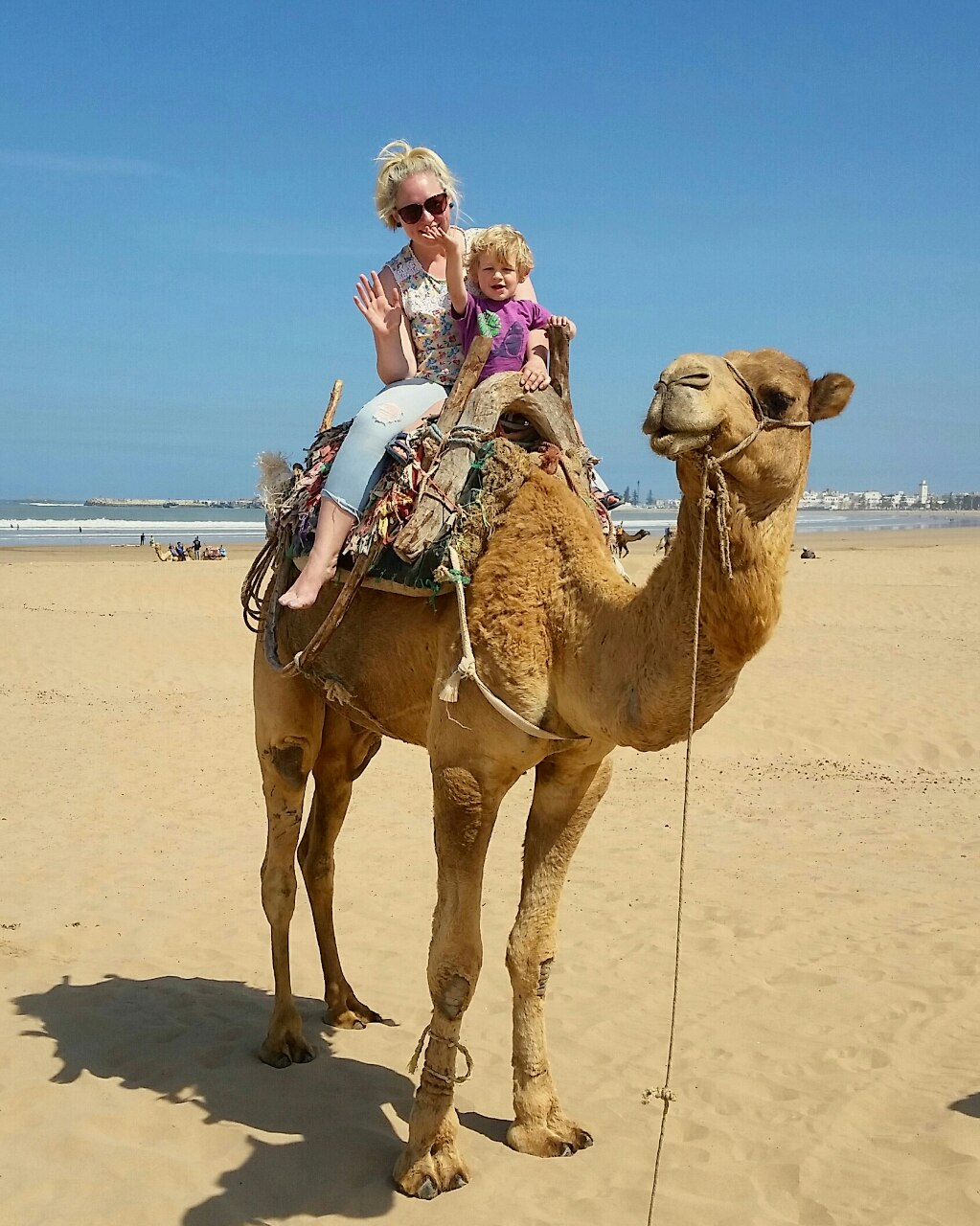 Essaouira with kids - camel