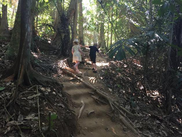 Borneo with kids - jungle