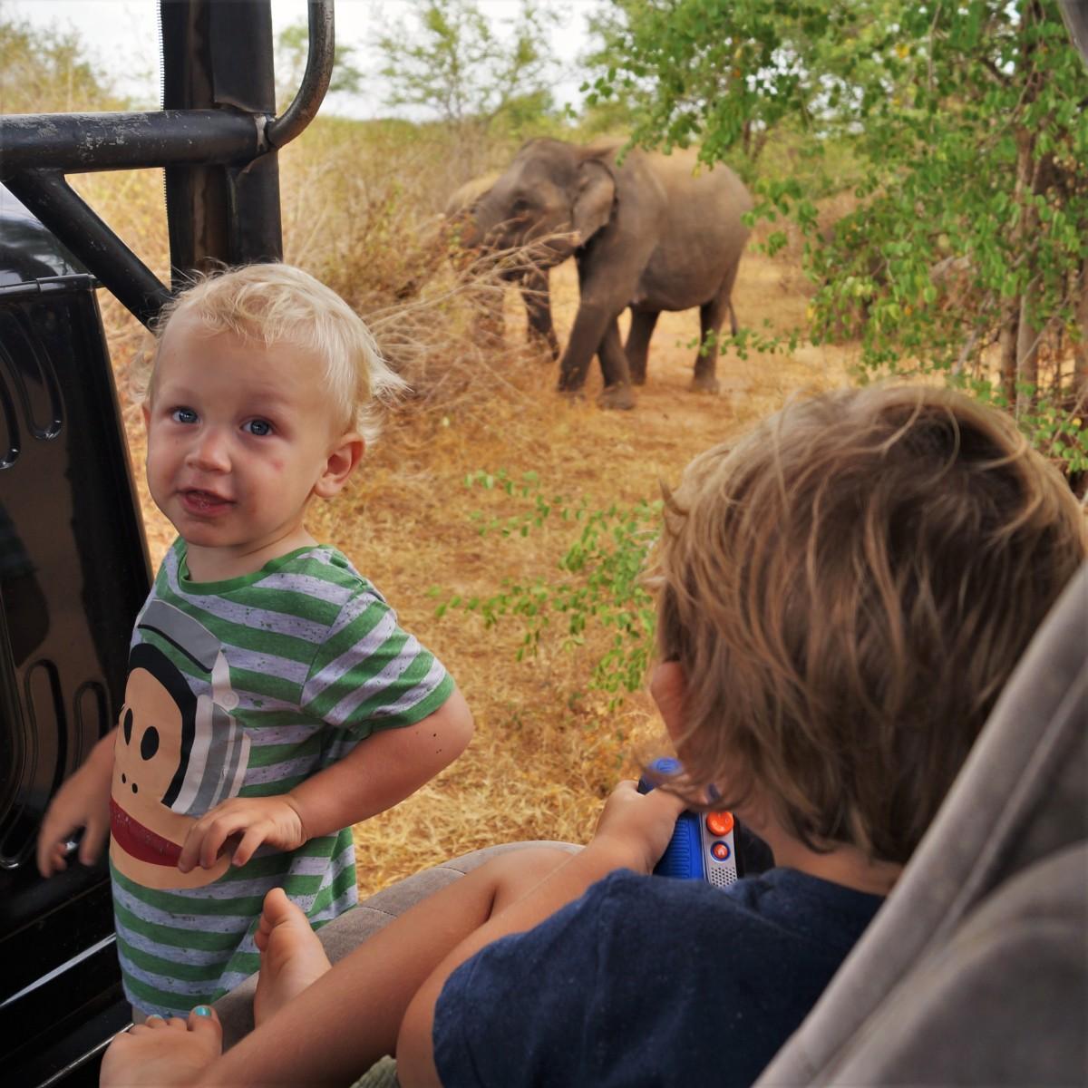 Udawalawe with kids - boys on safari
