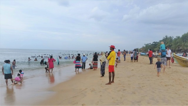 Arugam Bay with kids - Elephant Road
