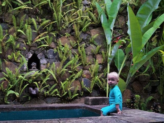 Living Heritage Koslanda plunge pool