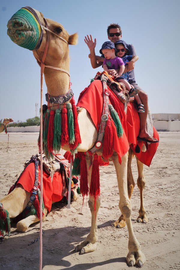 Doha stopover with kids - camel riding