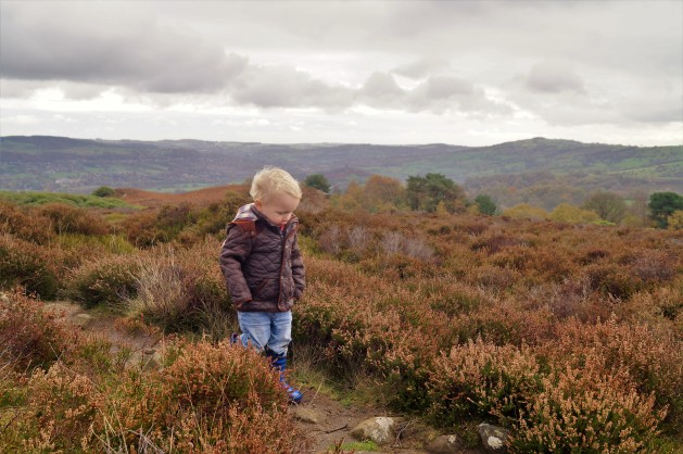 Short walks for young kids in the Peaks